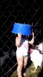 Pipisini tavuğa kaptıran bebe